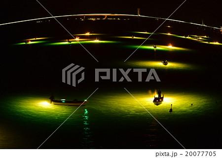 シラスウナギ漁 吉野川 20077705