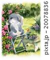 庭でおひるね 20078836