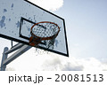20081513