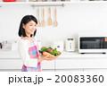 主婦(野菜) 20083360