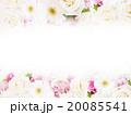 薔薇 花 ナチュラルのイラスト 20085541