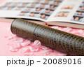 桜 花びら 卒業の写真 20089016