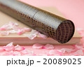 桜 花びら 卒業の写真 20089025