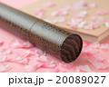 桜 花びら 卒業の写真 20089027
