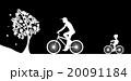 20091184