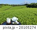 富士山 茶畑 お茶の写真 20105274