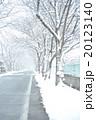 雪の道 20123140