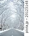 雪の道 20123148