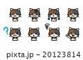 猫のセット 20123814