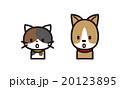 ネコとイヌ 20123895