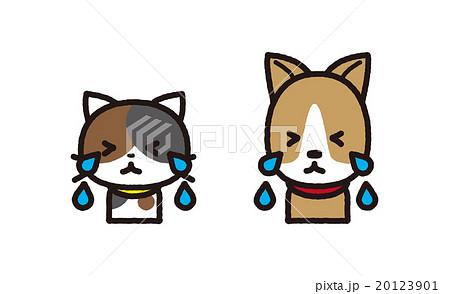ネコとイヌ 20123901