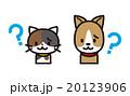 ネコとイヌ 20123906