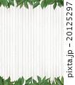 葉 背景 ナチュラルのイラスト 20125297