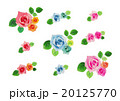 コサージュ 花 薔薇のイラスト 20125770