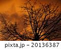 ホラーっぽい夕景 20136387