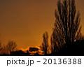 夕景2 20136388