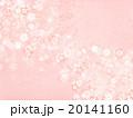 花 桜 ピンクのイラスト 20141160