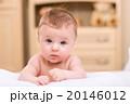 赤ちゃん 凝視 見つめるの写真 20146012