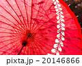 番傘 和傘 傘の写真 20146866