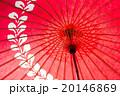 番傘 和傘 傘の写真 20146869