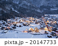 白川郷 ライトアップ 冬の写真 20147733