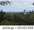 ティカル国立公園 20161568
