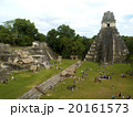ティカル国立公園 20161573