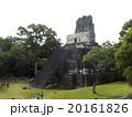 ティカル国立公園 20161826
