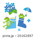 Frogs and rainboots with hydrangea 20162897