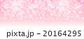 桜 背景 花のイラスト 20164295
