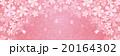 桜 背景 ピンクのイラスト 20164302