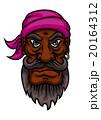 海賊 キャプテン 船長のイラスト 20164312