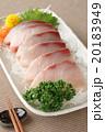 鰤 刺身 魚の写真 20183949