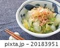 茹で白菜とおかか 20183951