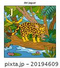 German alphabet, letter J (jaguar and background) 20194609