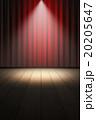 ステージ 20205647