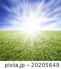 環境イメージ 20205649