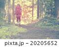 ハイキングイメージ 20205652