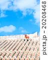 赤瓦屋根とシーサー 20208468