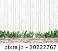 植物 葉 ナチュラルのイラスト 20222767
