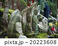 地蔵 石仏 今熊野観音寺の写真 20223608