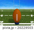Rugby ball on a grass  with blue sky 20229503