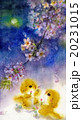 桜と犬_夜桜_団子 20231015