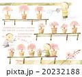 桜_盆栽 20232188