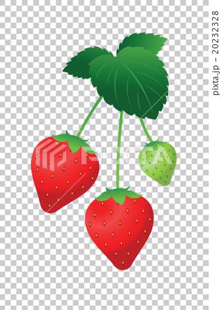 矢量 草莓 春天 20232328