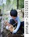 タケノコ掘り たけのこ 掘るの写真 20232335
