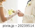 結婚 花嫁 ブライダルの写真 20239514