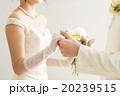 花嫁 ブライダル ウェディングの写真 20239515