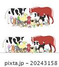 動物のセット、一列とグループ 20243158