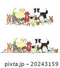 動物のセット、一列とグループ 20243159